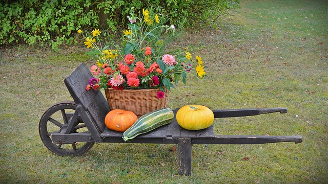 podzimní dekorace na zahradě.jpg